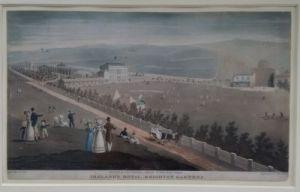 Ireland's Royal Brighton Gardens